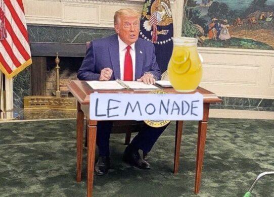 Trump's Lemonade Stand